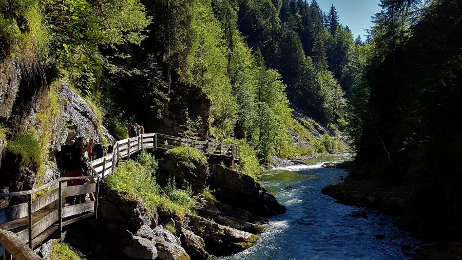 Weg am Fluss